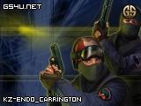 kz-endo_carrington